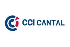 CCI 15